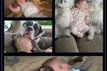 Kids' Best Friends